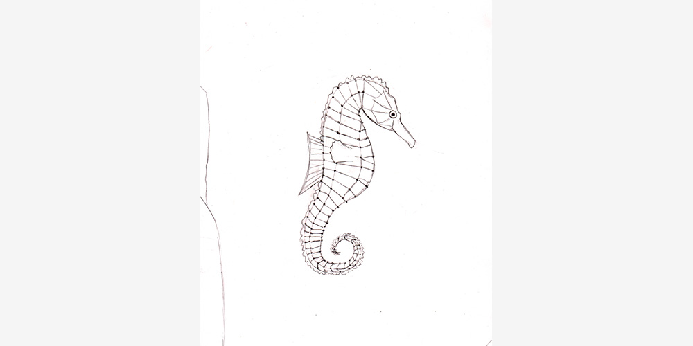 3.-seepferdchen-johanna