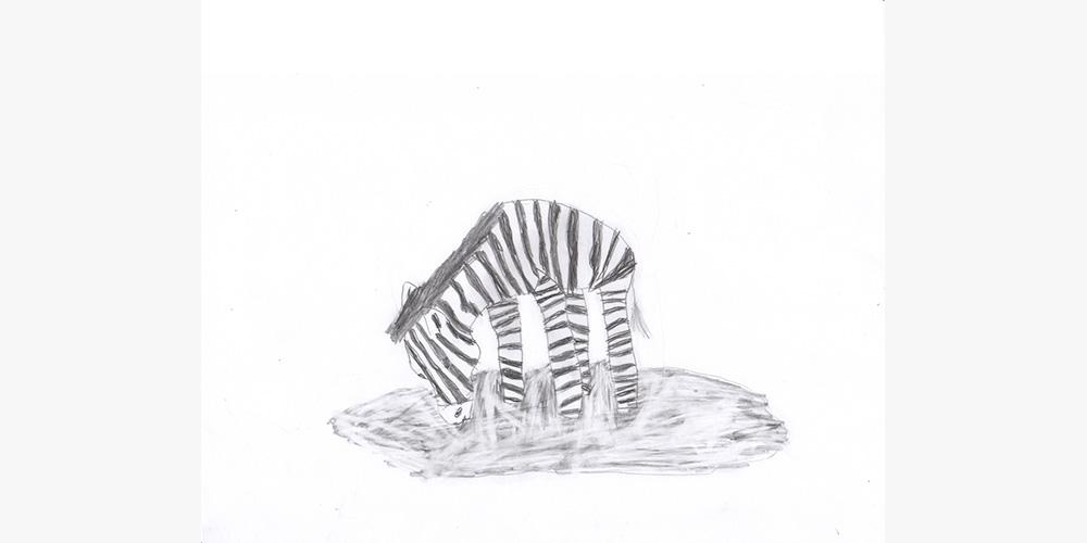 6.-zebra-mascha
