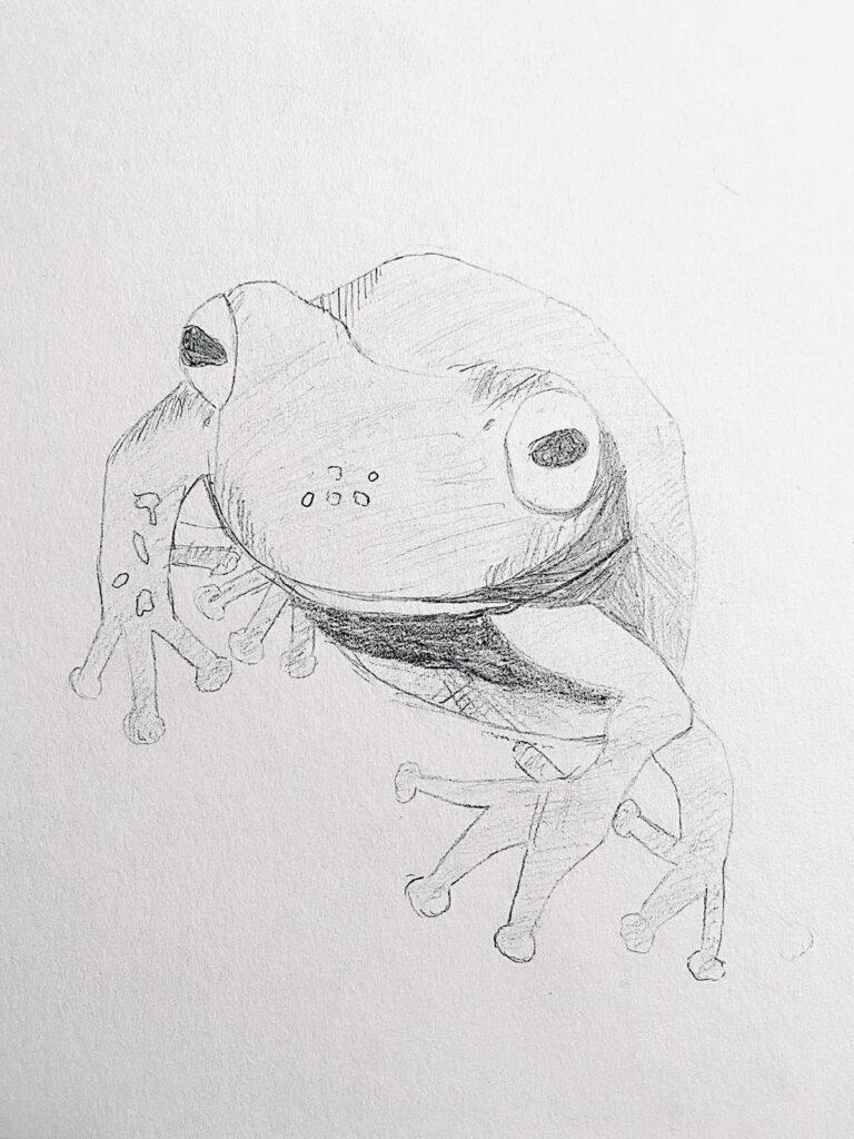 Emma 9J Bleistift Zeichnung Online Kurs Jan 21