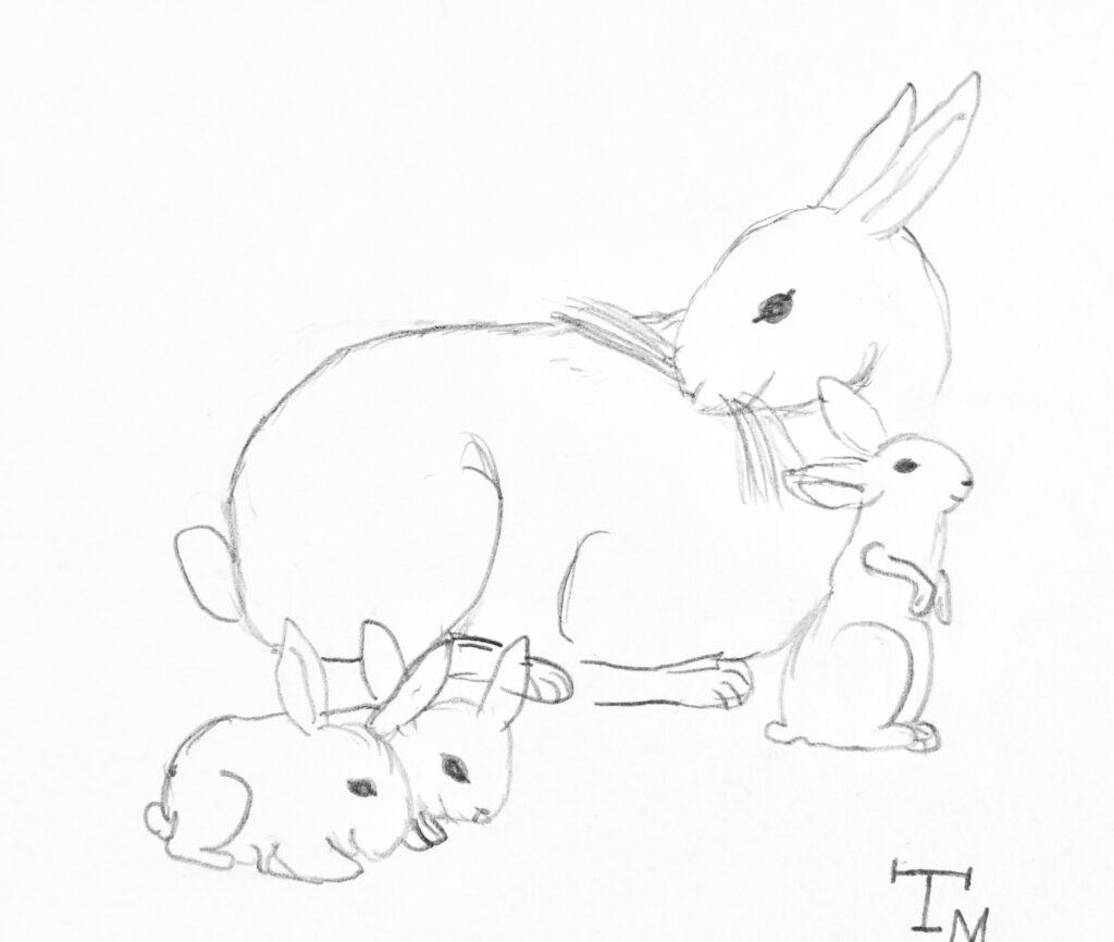 Kinder Zeichnen